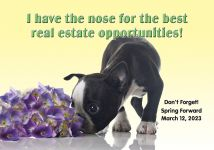 ReaMark Realtor Postcards - Monthly Real Estate Prospecting Postcards